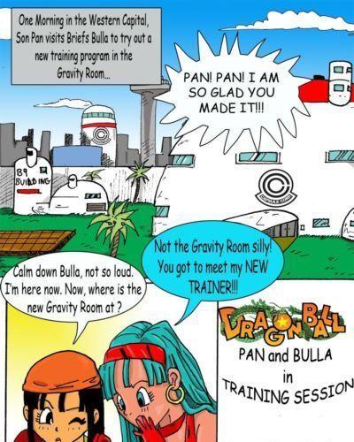 Dragon Ball- Pan And Bra\