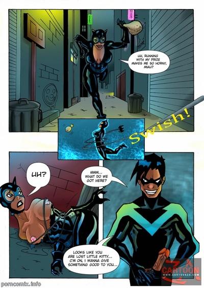 Gerechtigkeit Liga nightwing und catwoman